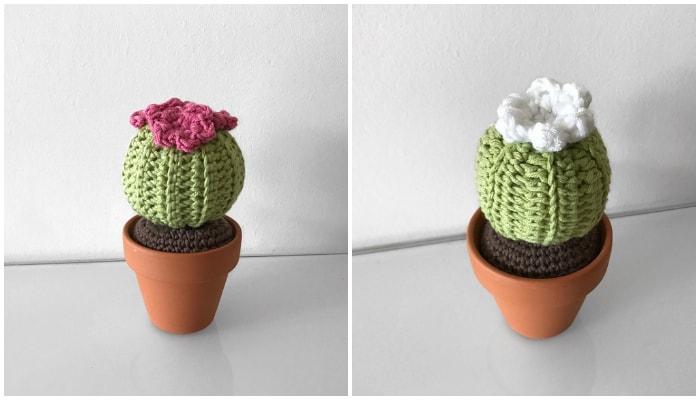 60 Amazing Crochet Cactus Patterns Crochet Kingdom Classy Crochet Cactus Free Pattern